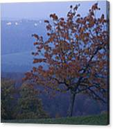 Autumn Colour At Dusk Canvas Print