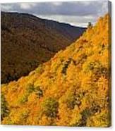 Autumn Colours At North Mountain Canvas Print