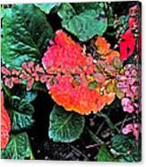 Autumn Composition One Canvas Print