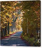 Autumn Country Road - Oil Canvas Print