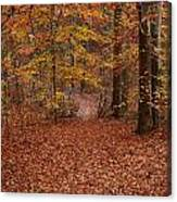 Autumn Creekside Trail Canvas Print