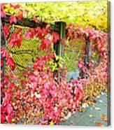 Autumn Decoration Canvas Print