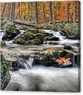 Autumn Dreams Canvas Print