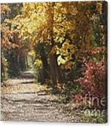 Autumn Dreams With Texture Canvas Print