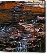 Autumn Falls 2 Canvas Print