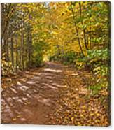 Autumn Foliage On A Country Road Canvas Print
