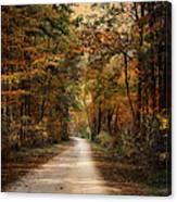 Autumn Forest 3 Canvas Print