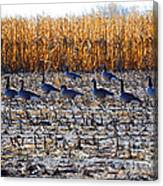 Autumn Geometry By Jrr Canvas Print