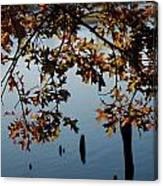 Autumn Gold On The Water Canvas Print