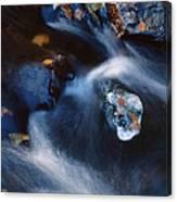 Autumn Ice In A Creek Canvas Print