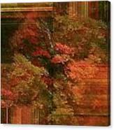 Autumn Illusion Canvas Print