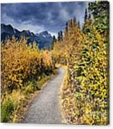 Autumn In Alberta Canvas Print