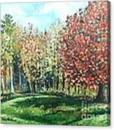 Autumn In My Backyard  Canvas Print