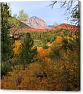 Autumn In Red Rock Canyon Canvas Print