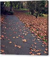 Autumn In St Fagans Park Cardiff Canvas Print