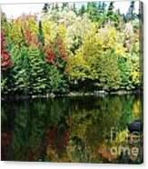 Autumn Jewels 3 Canvas Print