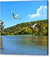 Autumn Landing Canvas Print