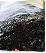 Autumn Leaf On River Rock Canvas Print