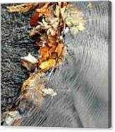 Autumn Leaves Tiny Dam Canvas Print
