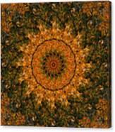 Autumn Mandala 1 Canvas Print