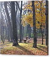 Autumn Morning Munson Park  Canvas Print