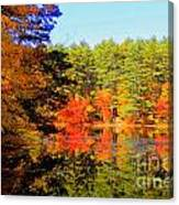 Autumn  Mosiac Canvas Print