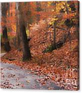 Autumn On A Quiet Country Lane Canvas Print