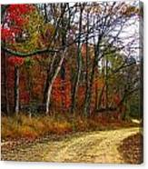 Autumn On Bottomland Road Canvas Print