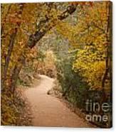 Autumn On Emerald Trail Canvas Print