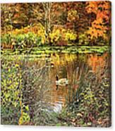 Autumn On Long Island Canvas Print