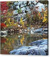 Autumn On The Black River 1 Canvas Print