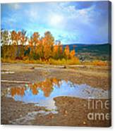 Autumn Puddles Canvas Print