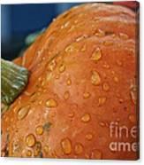Autumn Rain Drops Canvas Print