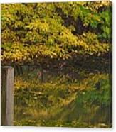 Autumn Reflections_0138 Canvas Print