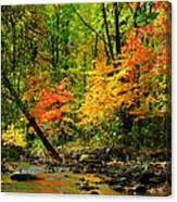 Autumn Reflects Canvas Print