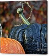 Autumn Riches Canvas Print