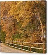 Autumn  Road To The Ranch Canvas Print
