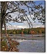 Autumn Shade Canvas Print