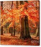 autumn skirt I Canvas Print