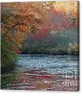 Autumn Splendor 1 Canvas Print