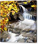 Autumn Stream No 3 Canvas Print