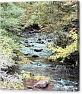 Autumn Streams Canvas Print