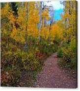 Autumn Trails Canvas Print