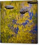Autumn Tree Reflections With Rocks On The Muskegon River Canvas Print