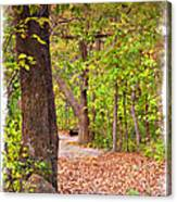 Autumn Walk - Impressions Canvas Print