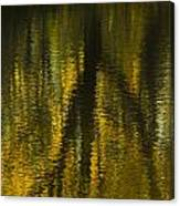 Autumn Water Reflection Abstract I Canvas Print