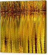 Autumn Water Reflection Abstract II Canvas Print