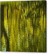Autumn Water Reflection Abstract IIi Canvas Print