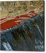 Autumn Waterfall Reflections Canvas Print