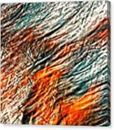 Autumn Winds Canvas Print
